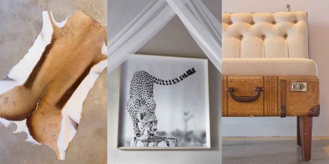 cheetah-room