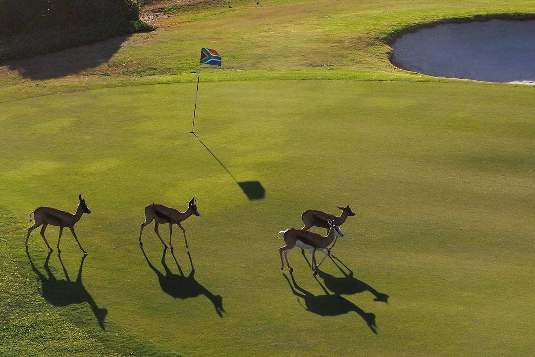 Golf at Villa Kudu